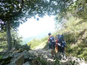Unterwegs nach Triacastela